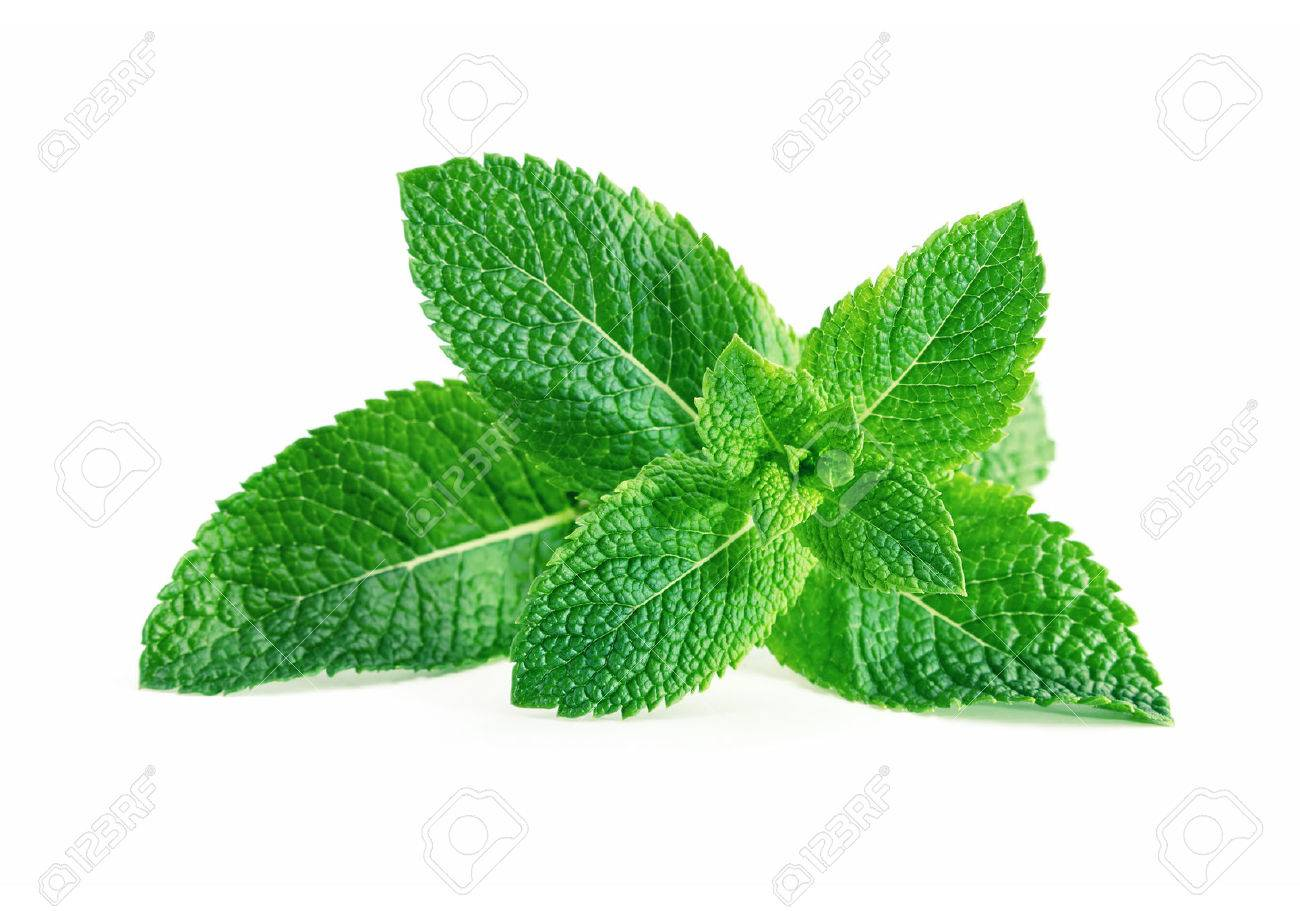 Mint leaves isolated on white background - 60469633