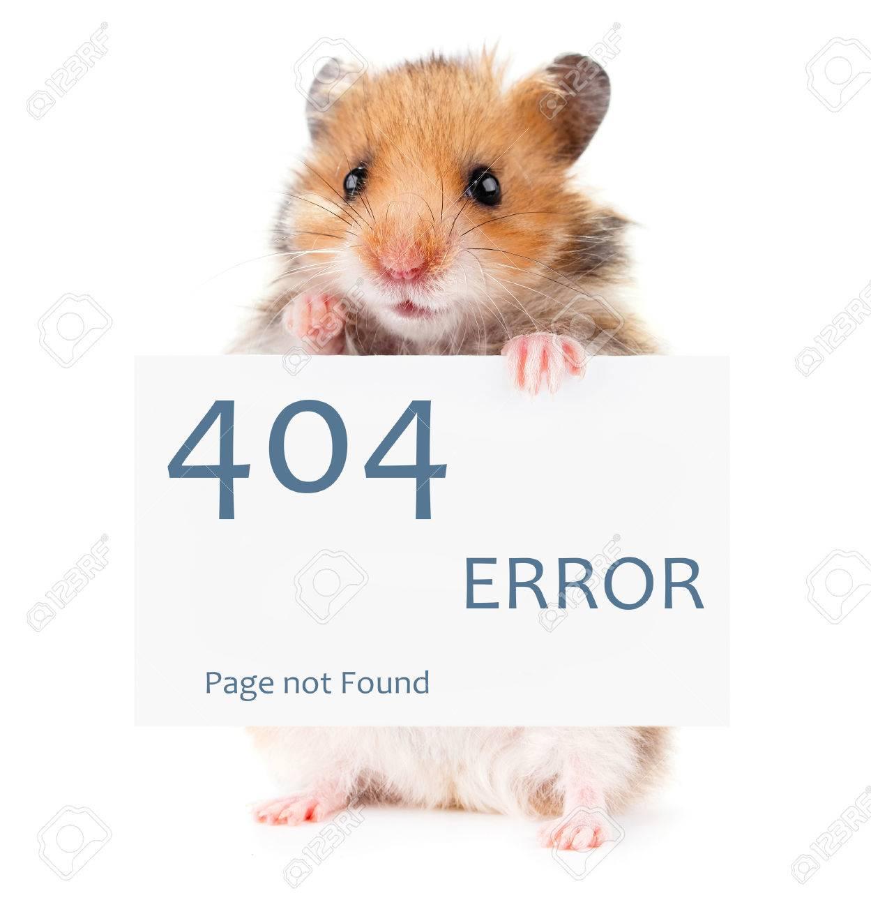 Little hamster keeps paws white poster 404 error - 60900179