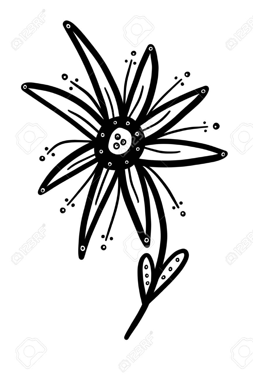 This Is A Fun Whimsical Black And White Flower That Can Be Used