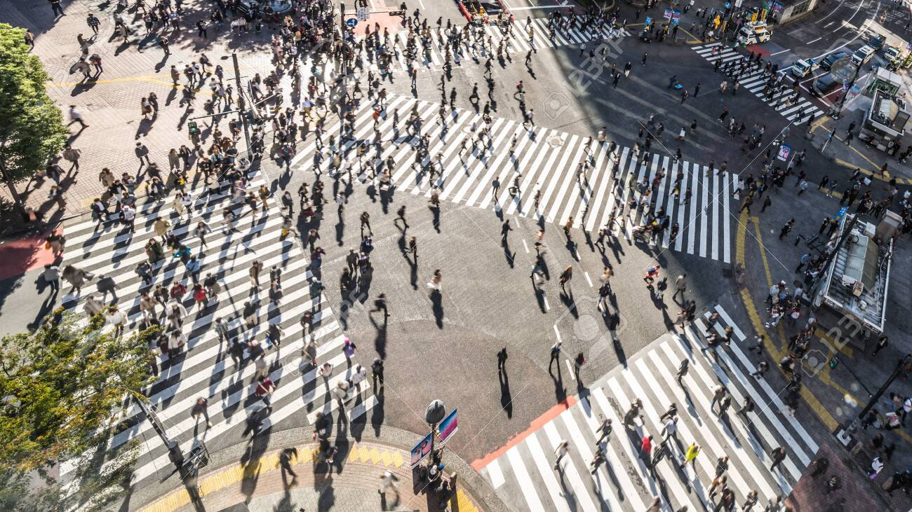 Motion blur of Crowded people walking and car traffic transport on Shibuya scramble crossing, high angle view. Tokyo tourist attraction, Japan tourism, Asia transportation or Asian city life concept - 135337895