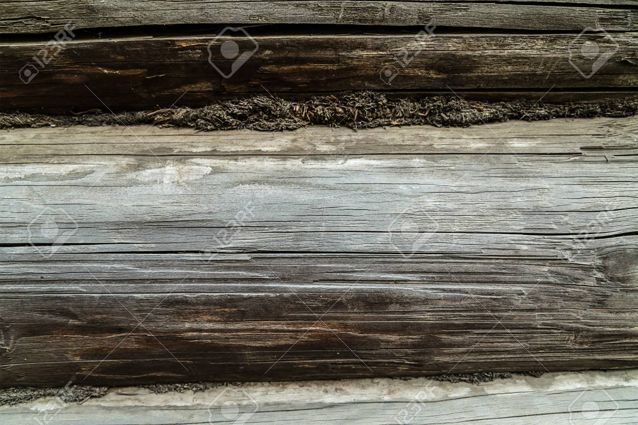 wooden background texture, gray log crack element wall rustic
