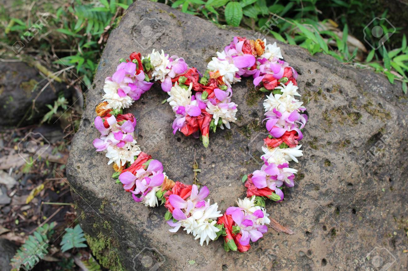 Heart shaped wreath made of fresh flowers hawaiian lei royalty heart shaped wreath made of fresh flowers hawaiian lei stockfoto 72952918 izmirmasajfo