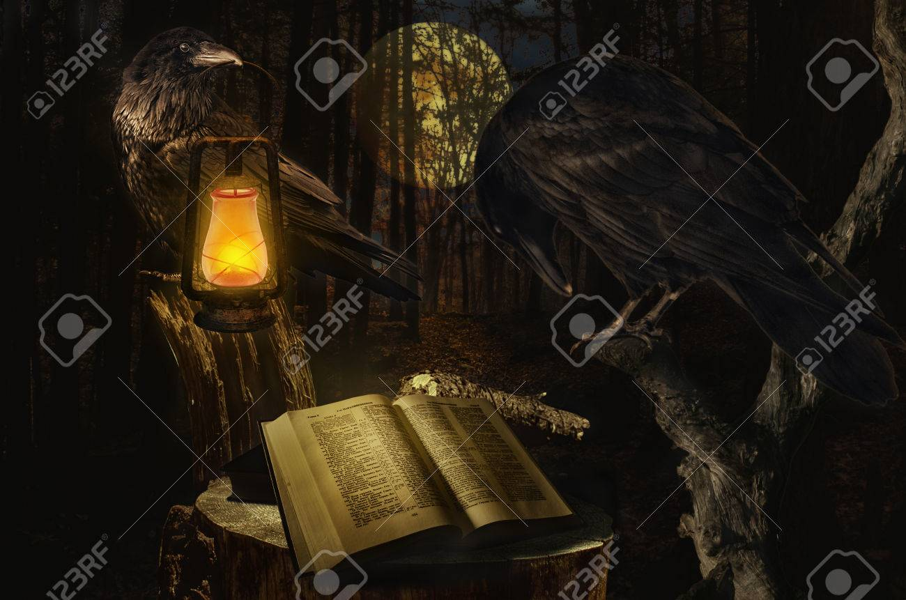 Ravens Read The Book Concept The Raven Symbol Of Longevity Stock
