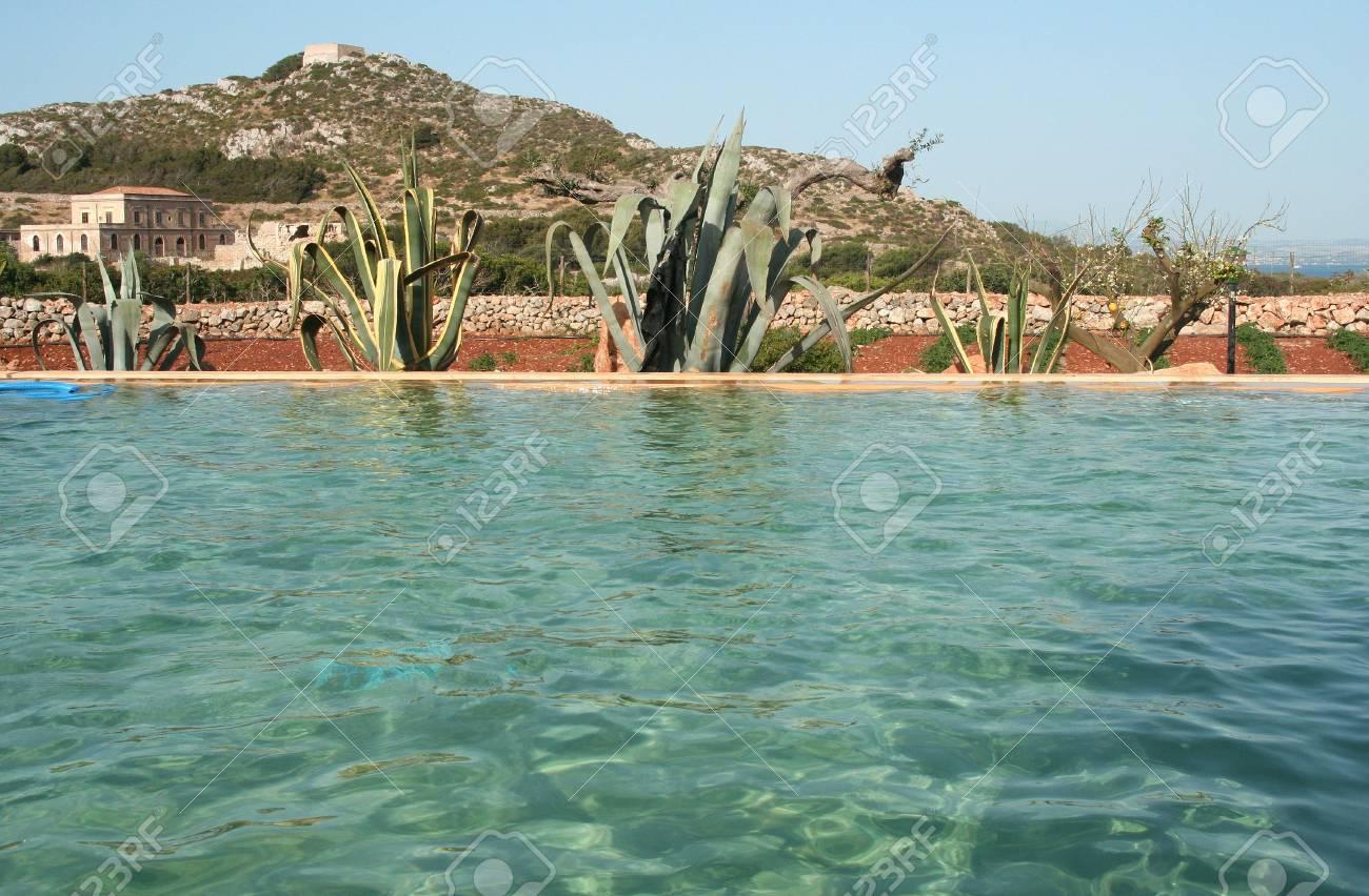 Piscine Et Jardin Mediterraneen Banque D Images Et Photos Libres