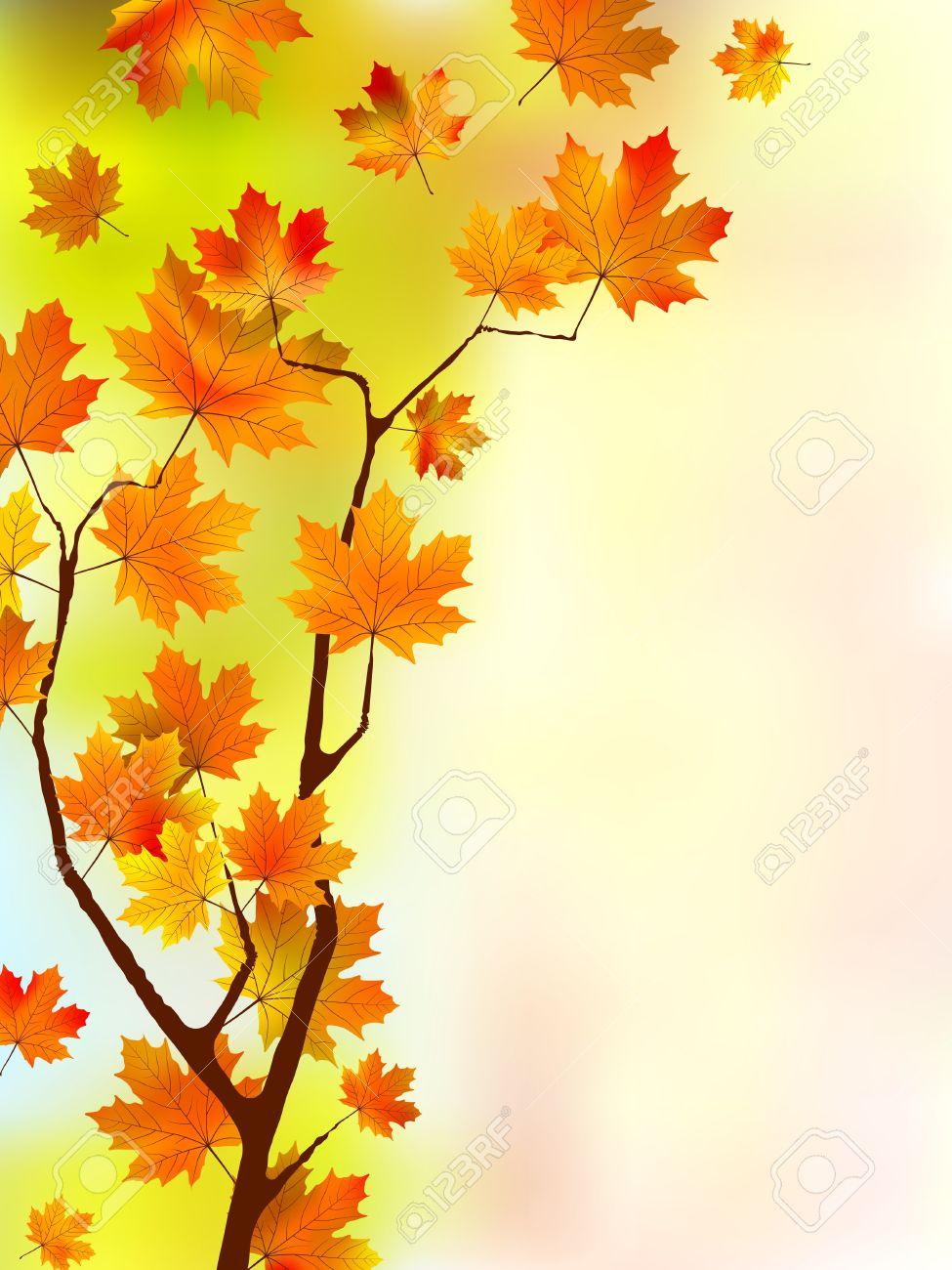Autumn silk floral leaves. Stock Vector - 7913327