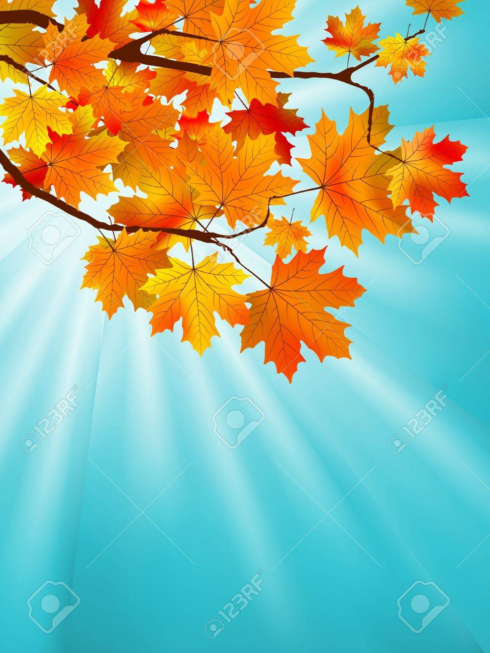 Red yellow fall maple leafs over the blue sky. Stock Vector - 9714078