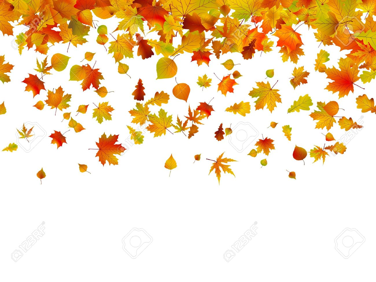 Background of autumn leaves. EPS 8 vector file included Stock Vector - 10388801
