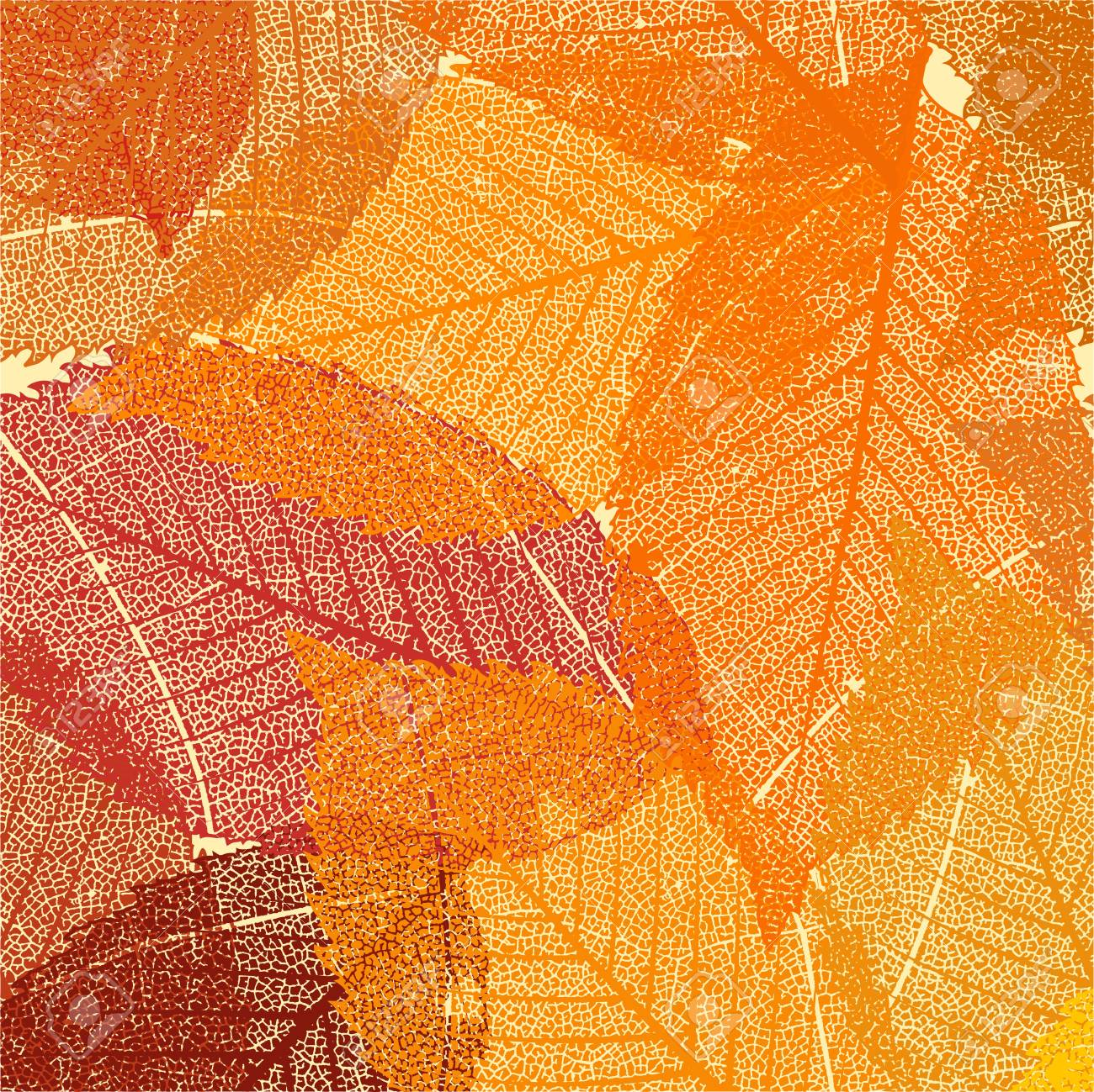 dry autumn leaves template royalty free cliparts vectors and