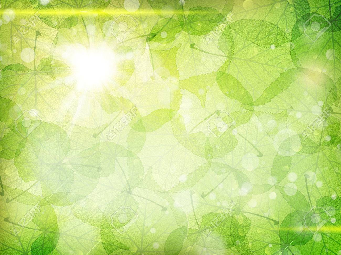 Green leaves background. EPS 10 vector file included - 51470966
