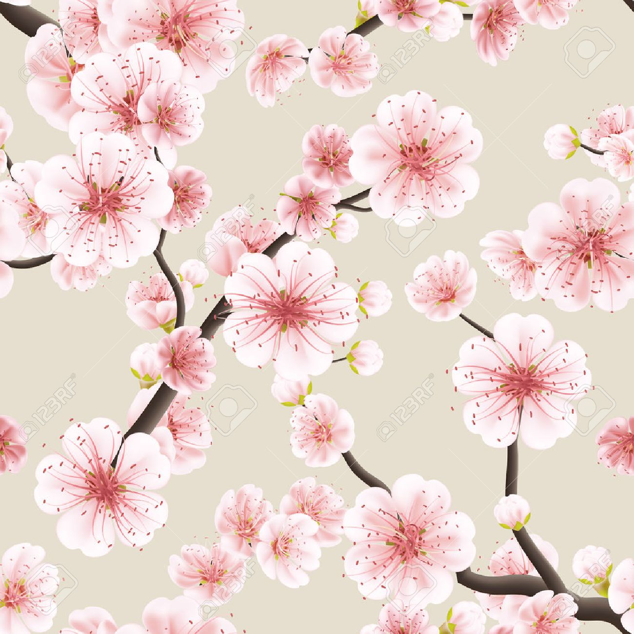 Seamless background pattern of pink sakura blossom or japanese seamless background pattern of pink sakura blossom or japanese flowering cherry symbolic of spring in a dhlflorist Images