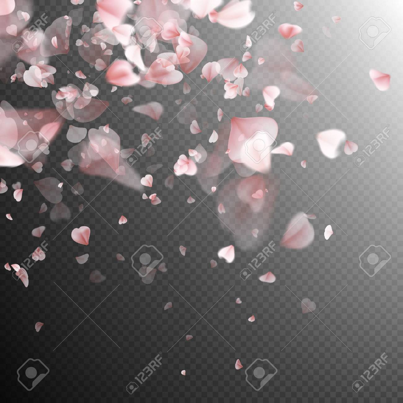 Pink petals background. EPS 10 vector file included - 68245428