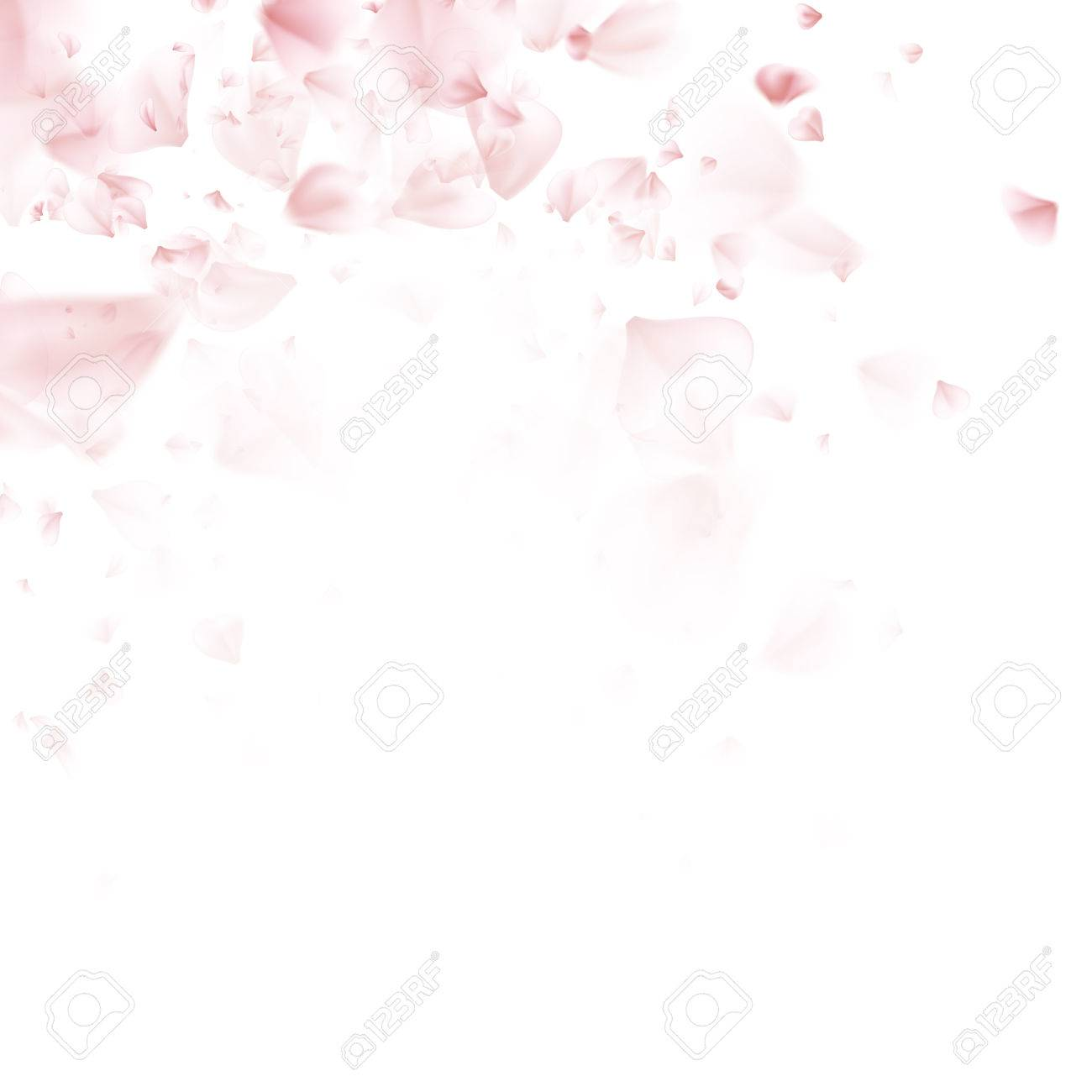 Flying petals. Pattern on white color background. EPS 10 vector file included - 68245437