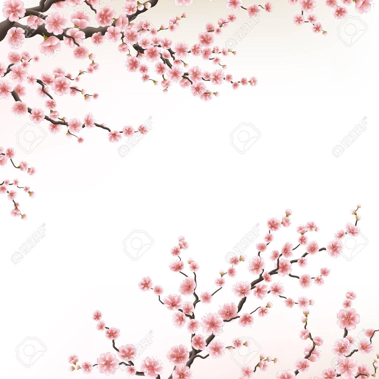 Invitation Cards With A Blossom Sakura Eps 10
