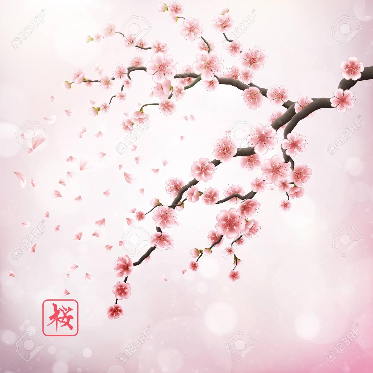 Realiste Branche De Cerisier Du Japon Eps 10 Clip Art Libres De Droits Vecteurs Et Illustration Image 69809151