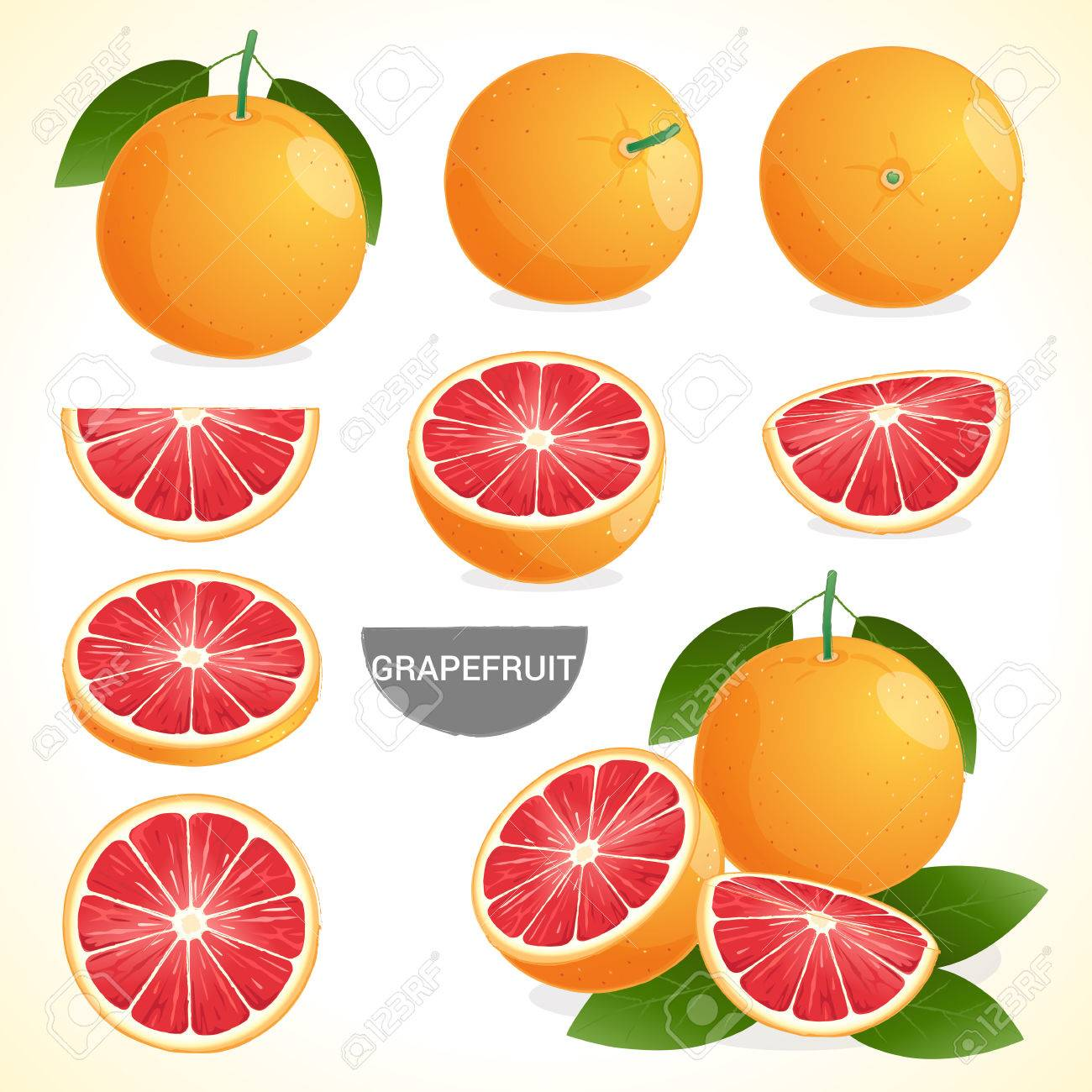 Set of grapefruit with leaf in various styles - 52528221