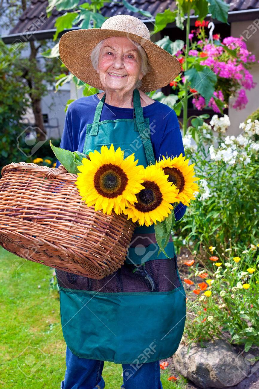 6fe46936d03f4 Portrait Of A Smiling Old Woman With Apron And Hat For Gardening ...