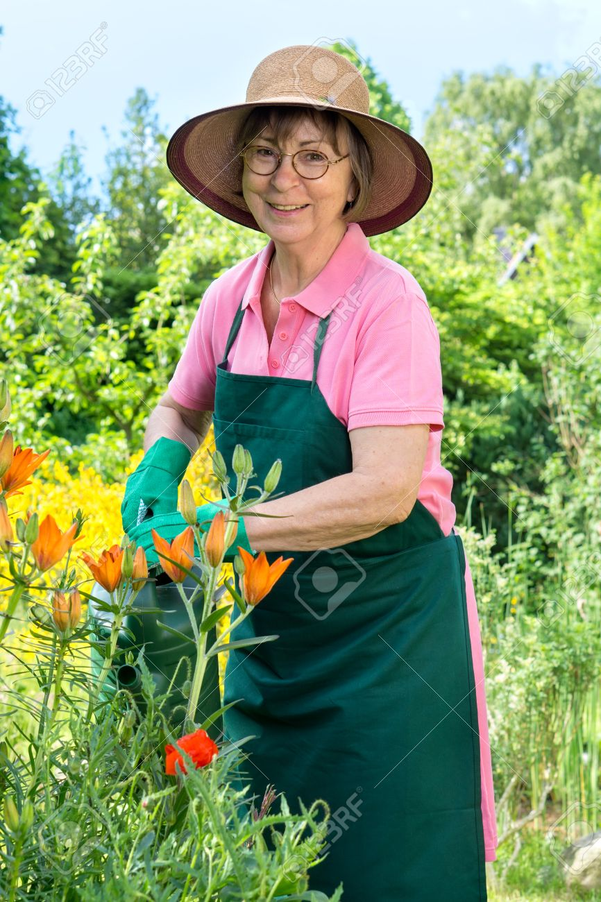 ec5cf98c16248 Happy elderly female gardener in a straw sunhat and apron standing watering  her flowers in the