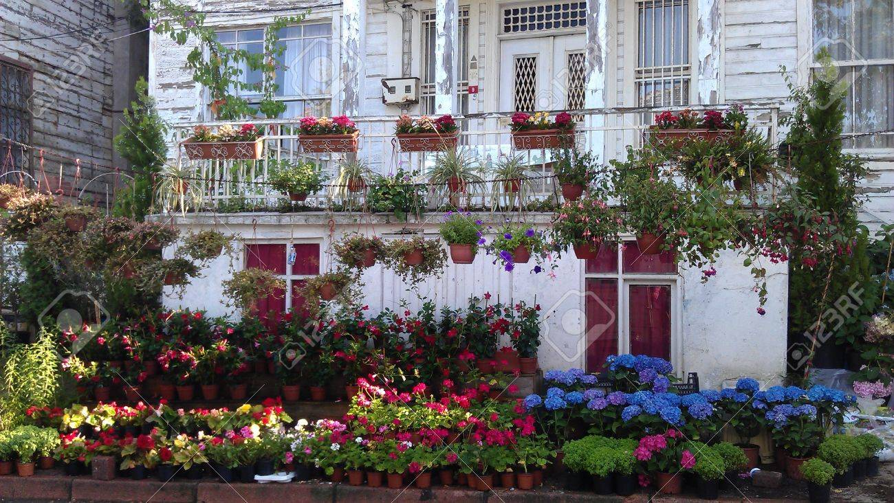 balcony of a house with lots of flowers stock photo, picture and
