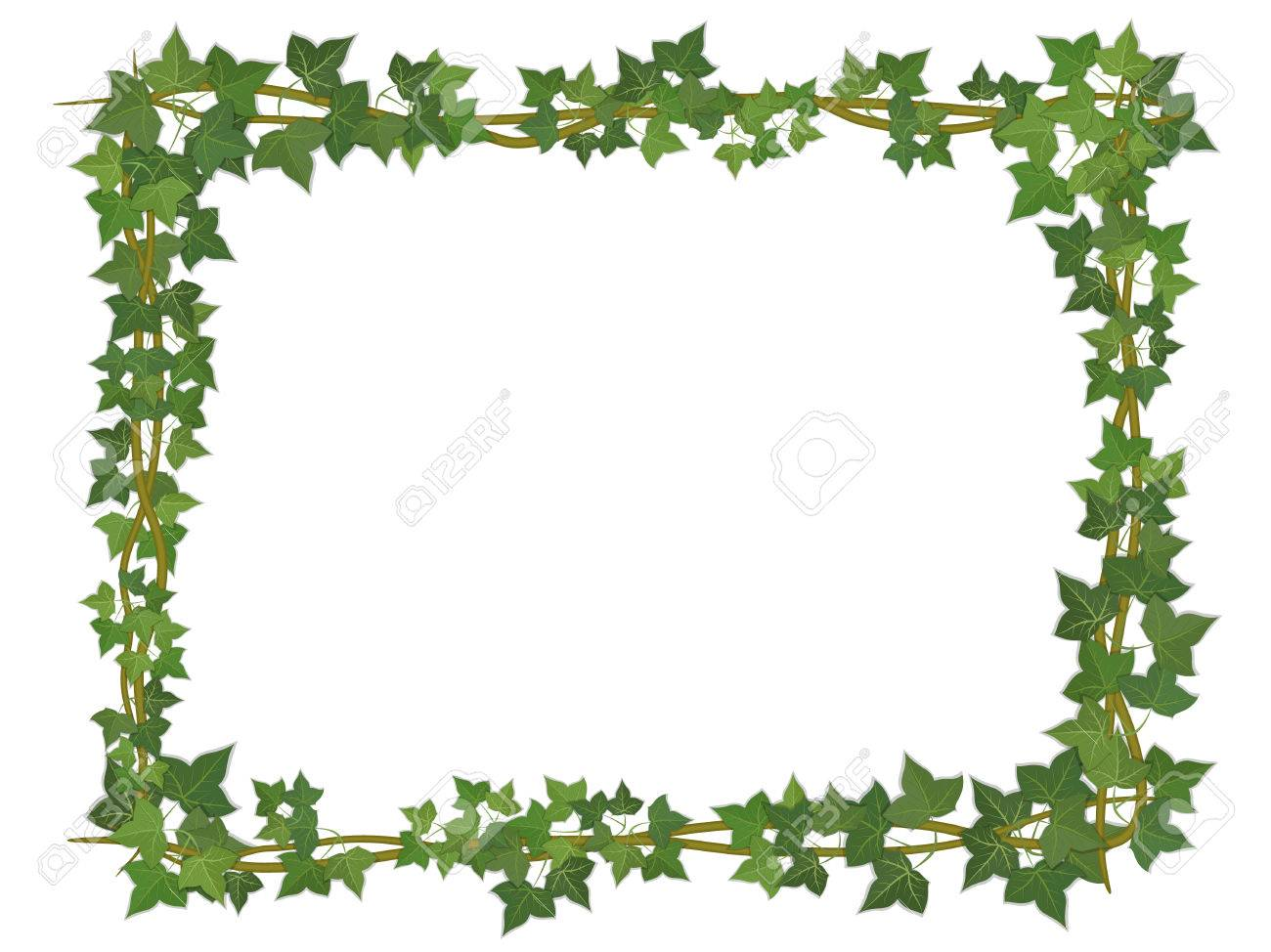 square decorative frame of ivy branches royalty free cliparts