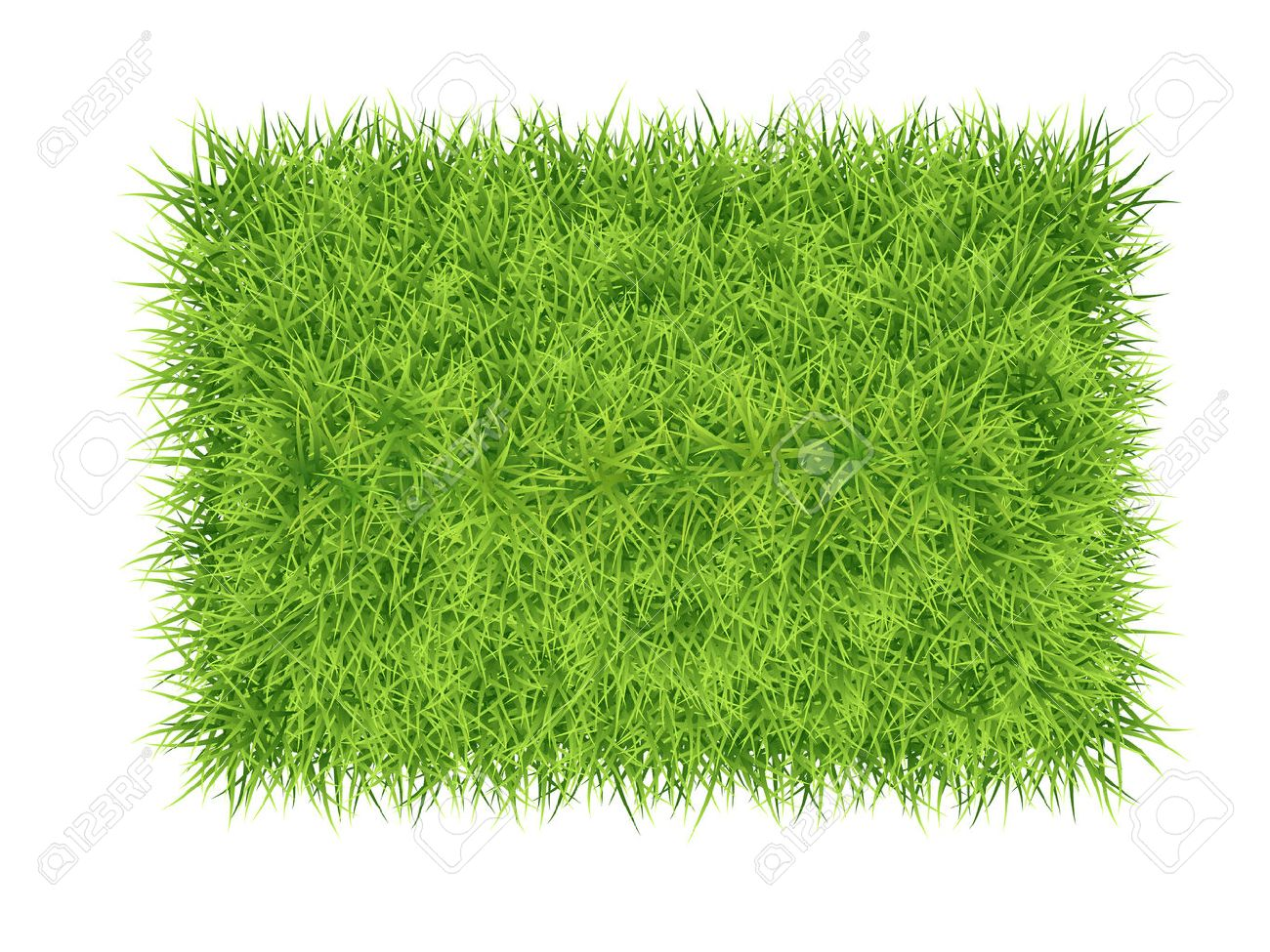 Green grass rectangle - vector nature background Stock Vector - 38795709