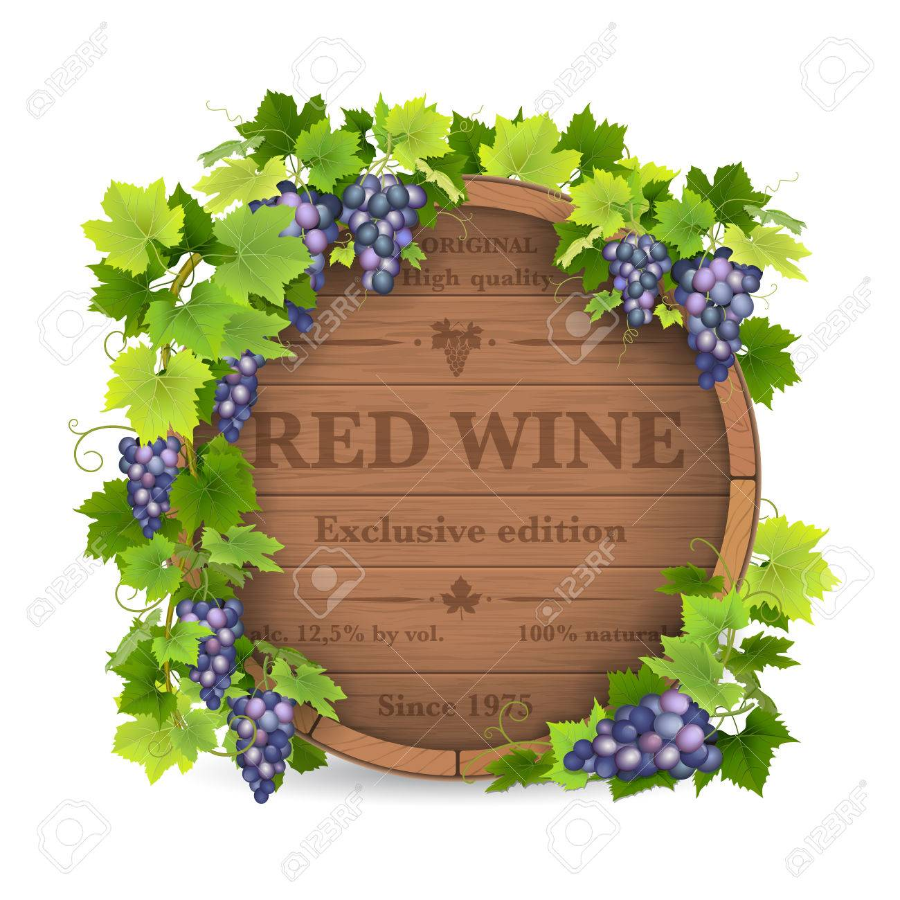 Barrels for wine and vine with grapes. Stock Vector - 51579978