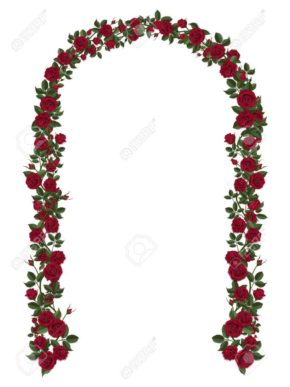 Arco De Rosas Rojas De Escalada Diseño Floral Decoración De Boda Ilustraciones Vectoriales Clip Art Vectorizado Libre De Derechos Image 53523680