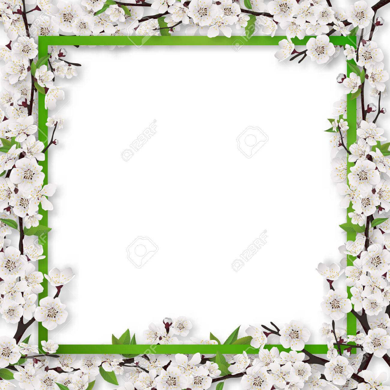 square frame overgrown blossom tree branch apple or cherry vector