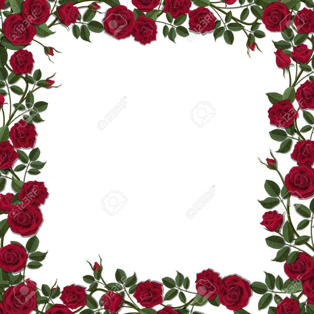 Marco Cuadrado De La Flor De Flores Rosas Rojas Modelo Del Vector
