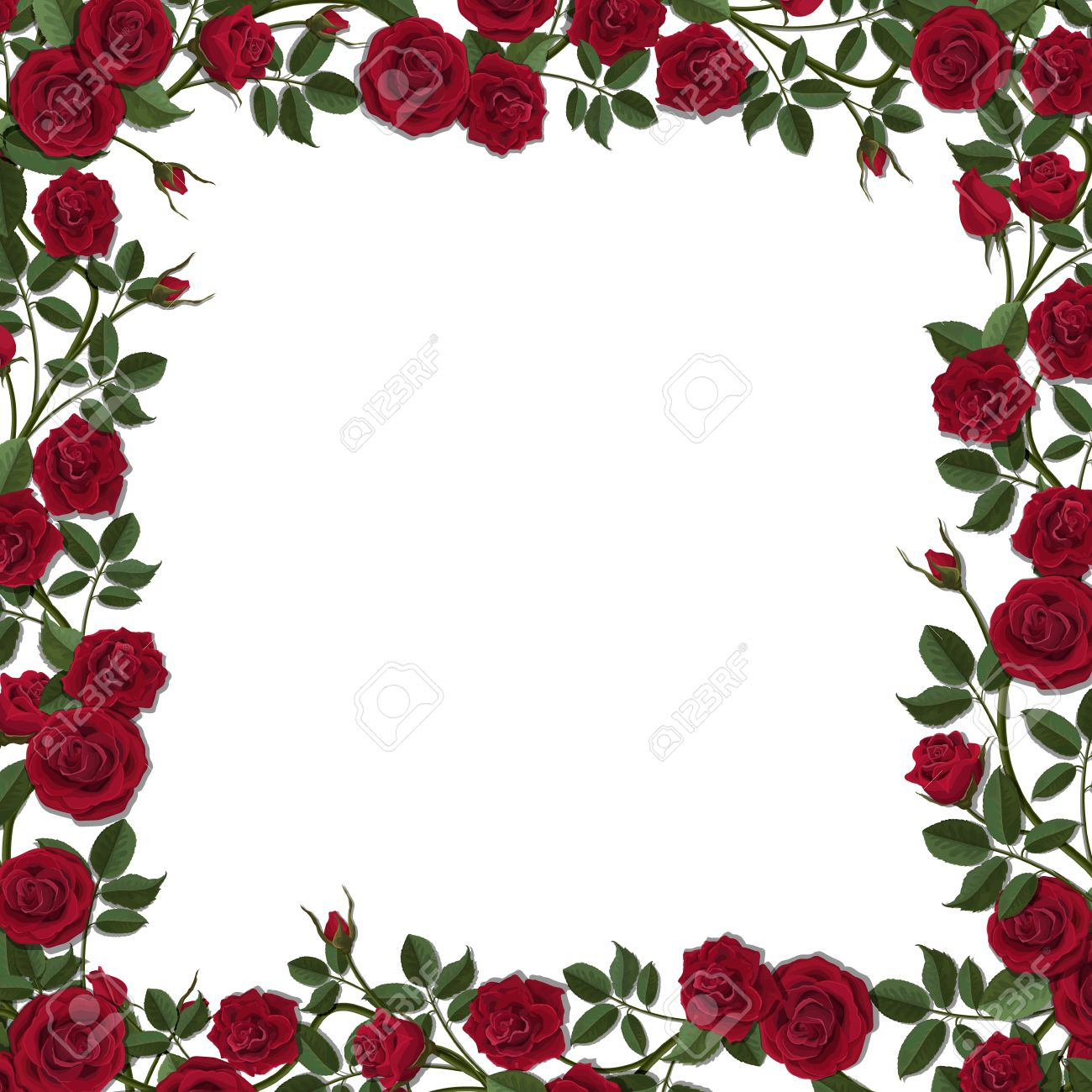 Square frame of red blossom rose flowers. Vector template for greeting card, wedding or Valentine's day. - 70951893