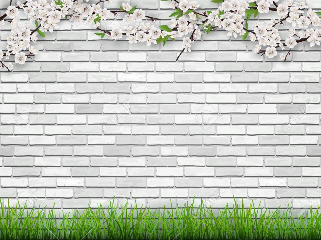 Blooming Tree Branch With Flowers And Green Leaves On White Brick Royalty Free Cliparts Vectors And Stock Illustration Image 73489172
