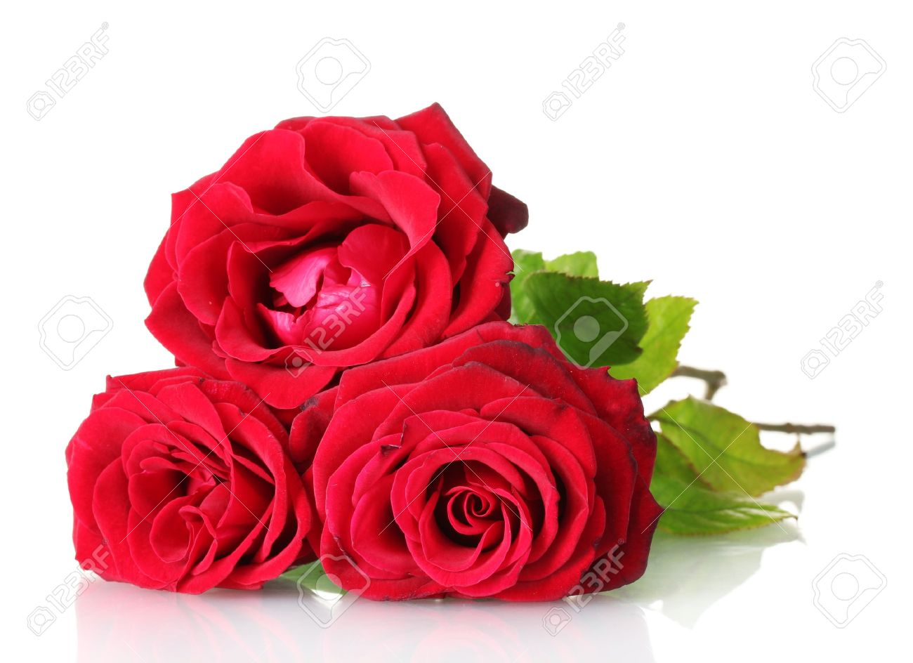 Beautiful Bouquet Of Red Roses Isolated On White Stock Photo