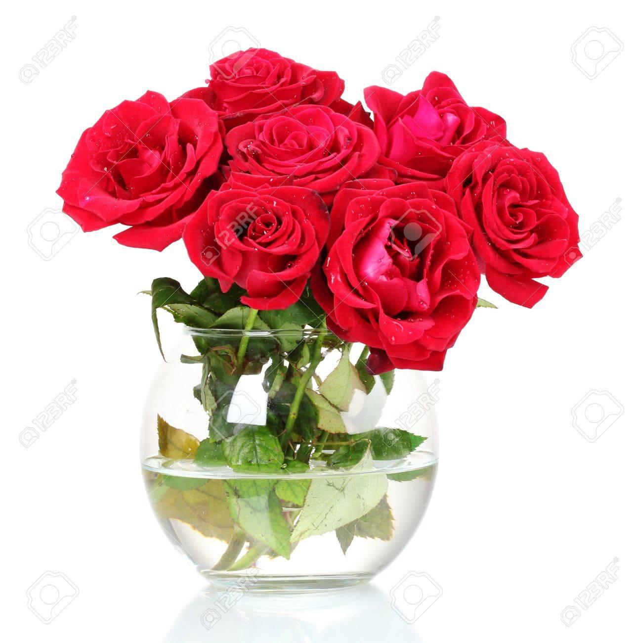 Rozen In Vaas.Mooie Rode Rozen In Een Vaas Op Wit Wordt Gea Soleerd Royalty Vrije