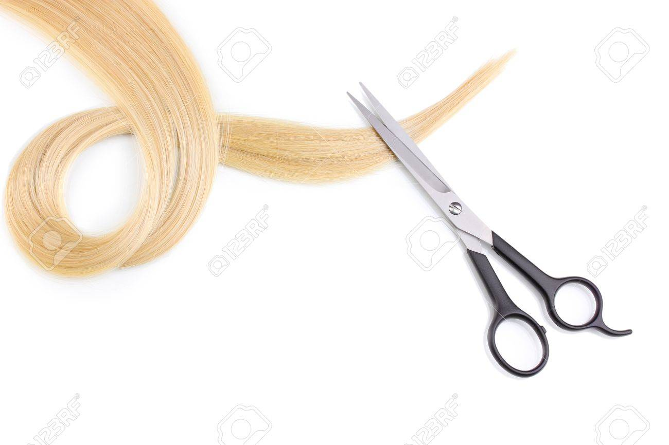 Shiny blond hair and hair cutting shears isolated on white Stock Photo - 12313063
