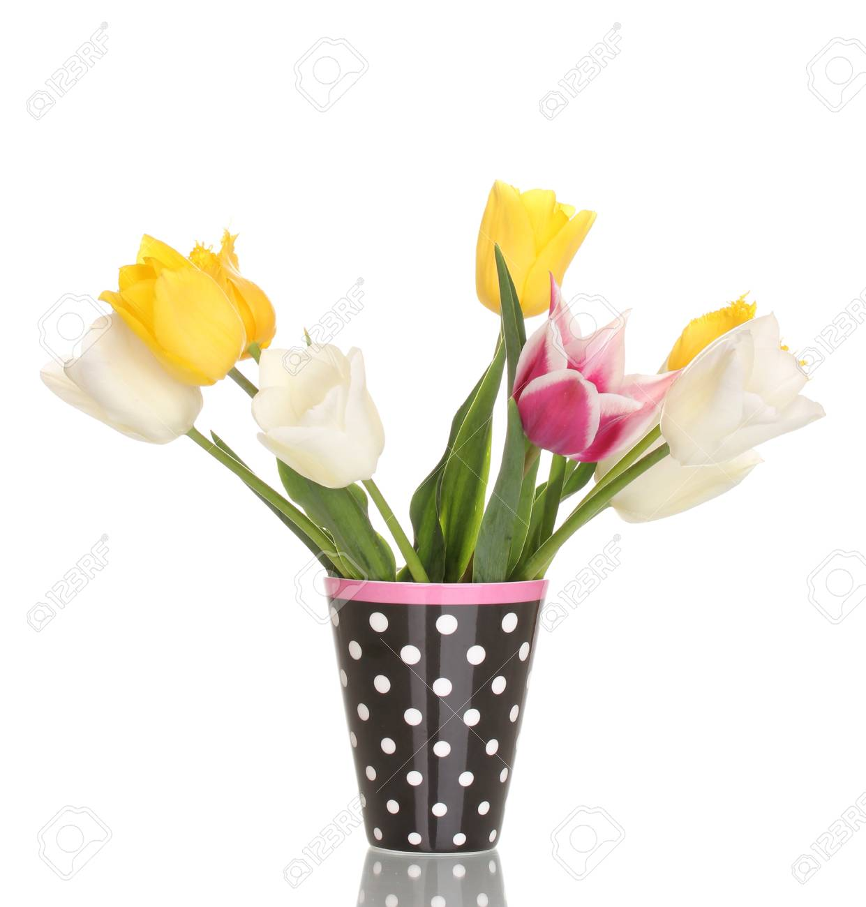 Beautiful tulips in vase isolated on white Stock Photo - 13438243