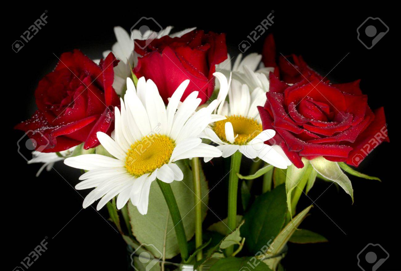 Vase with a bouquet of roses and daisies on black background vase with a bouquet of roses and daisies on black background close up stock photo reviewsmspy