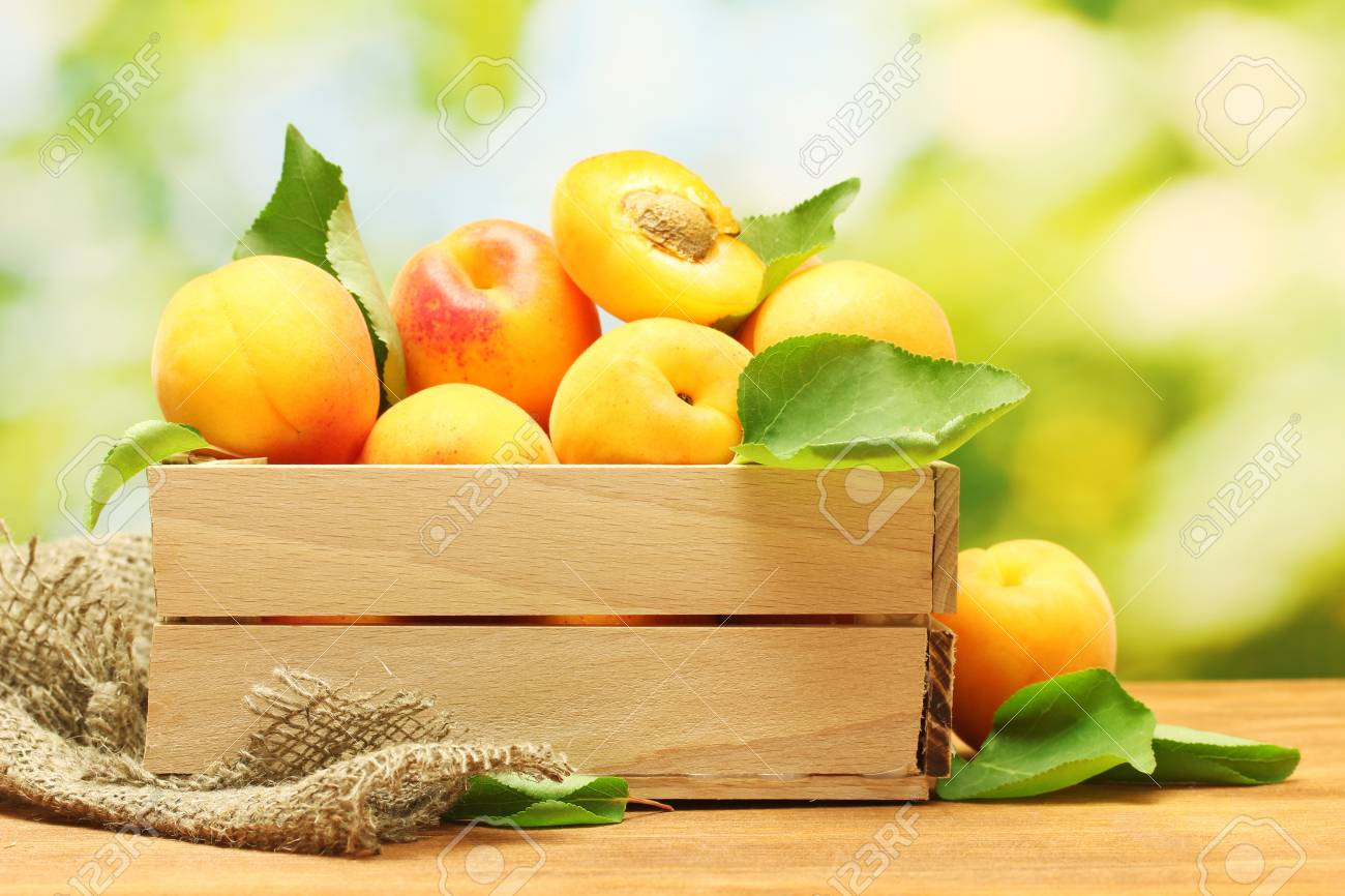 ripe apricots with leaves in wooden box on wooden table on green background Stock Photo - 14222921