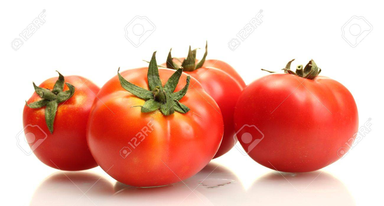 tomatoes isolated on white - 14759329