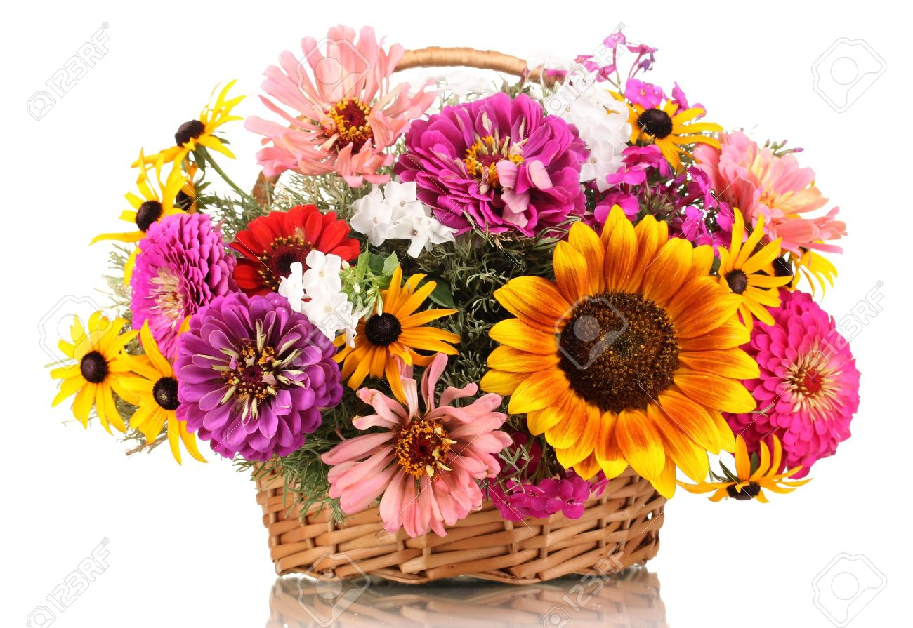 Beautiful Bouquet Of Bright Flowers In Basket Isolated On White ...