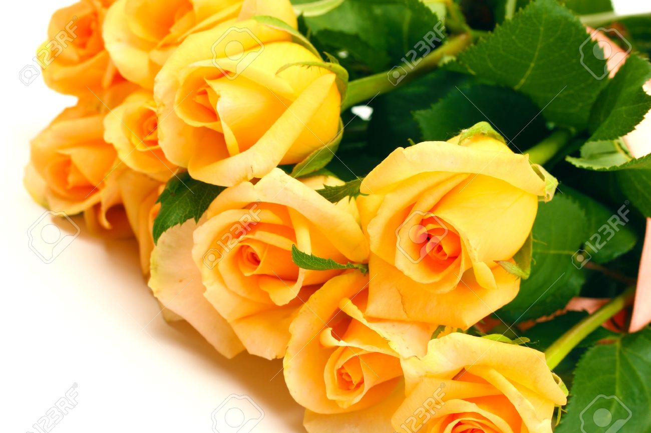 Beautiful Bouquet Of Roses Isolated On White Stock Photo Picture