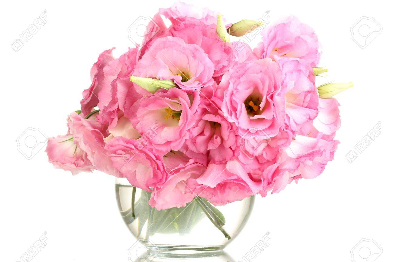 Bouquet Of Eustoma Flowers In Vase, Isolated On White Stock Photo ...