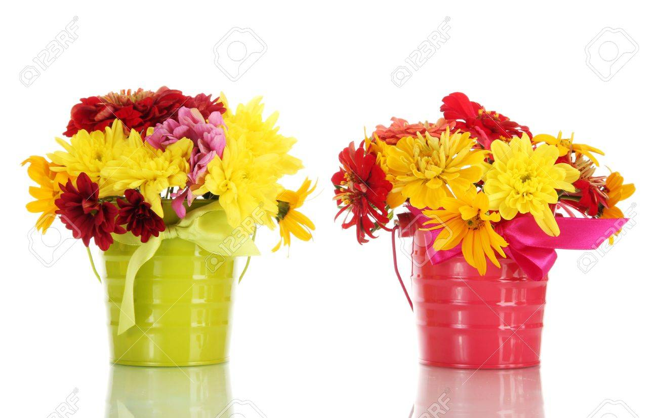 Beautiful Summer Flowers In Buckets Isolated On White Stock Photo
