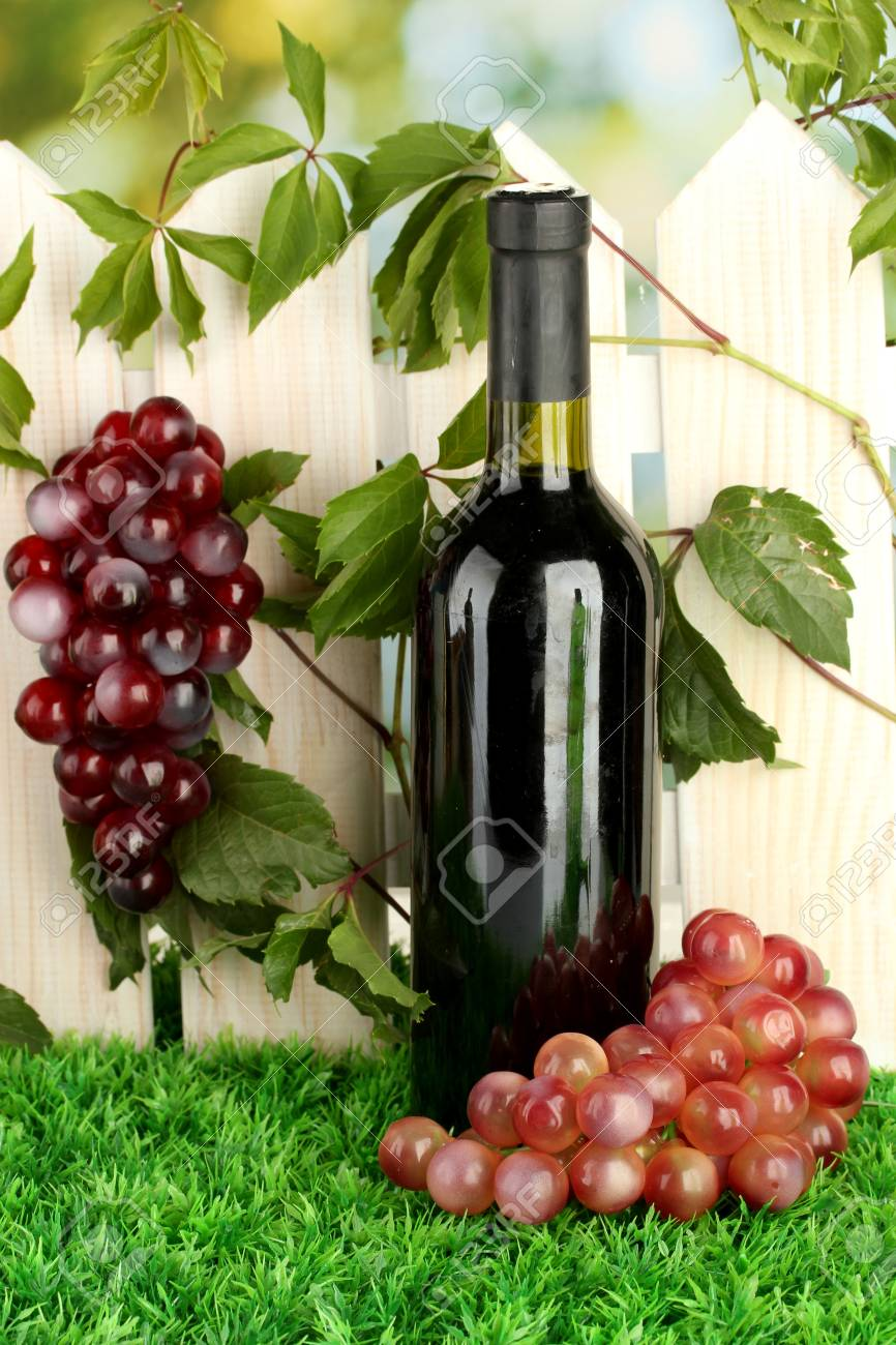 a bottle of wine on the fence background close-up Stock Photo - 15496249