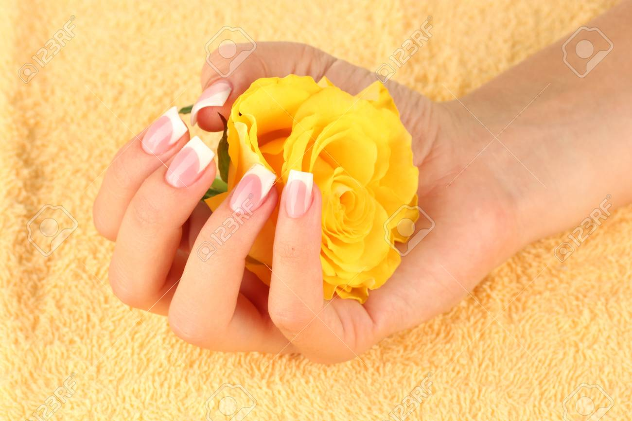 Yellow rose with woman's hand on yellow terry towel, close-up Stock Photo - 15456275