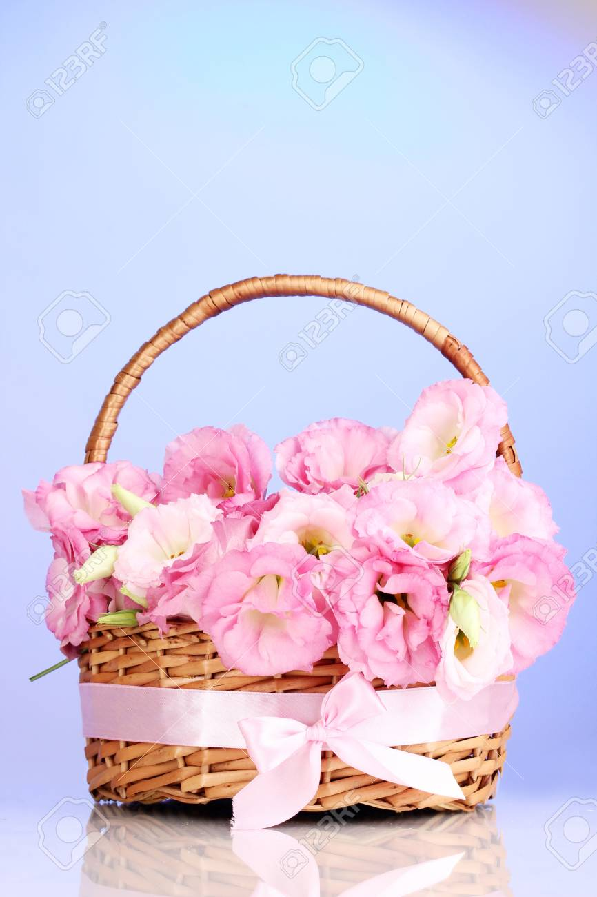Bouquet Of Eustoma Flowers In Basket, On Blue Background Stock Photo ...