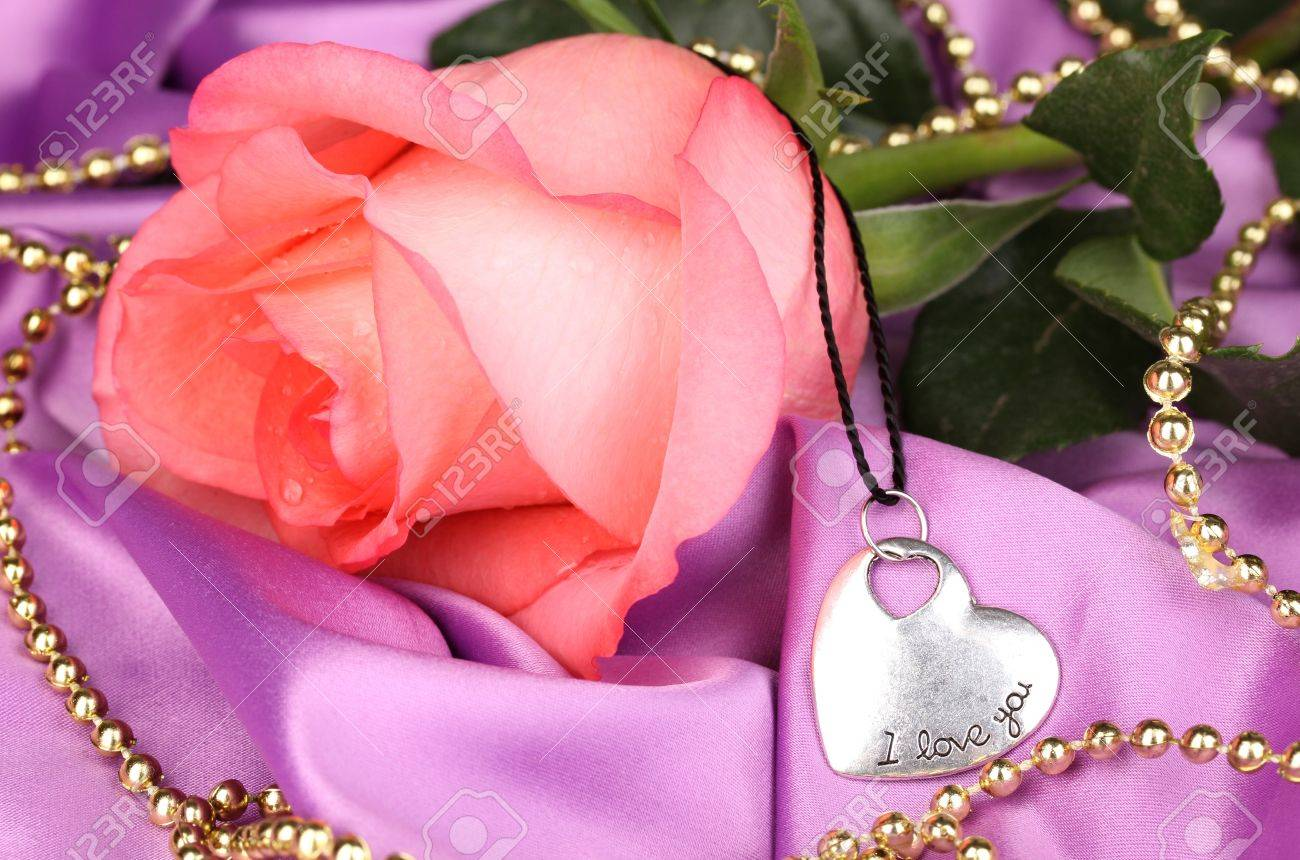 Beautiful pink rose with heart pendant stock photo picture and beautiful pink rose with heart pendant stock photo 15964234 audiocablefo light ideas
