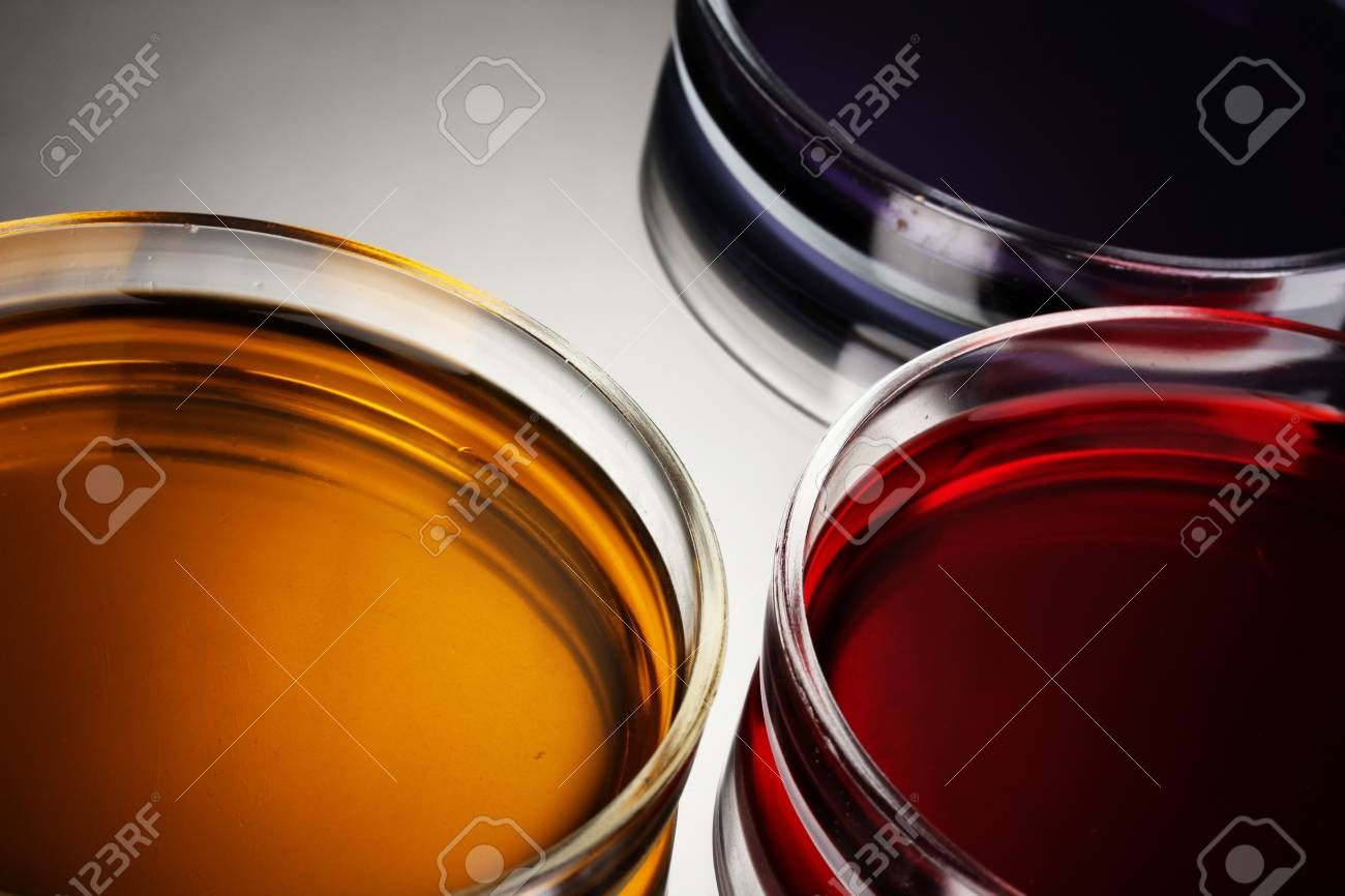 color liquid in petri dishes on grey background Stock Photo - 16276167