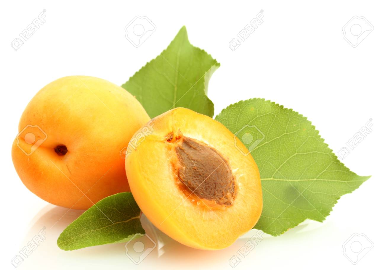 ripe sweet apricots with green leaves isolated on white Stock Photo - 16645331