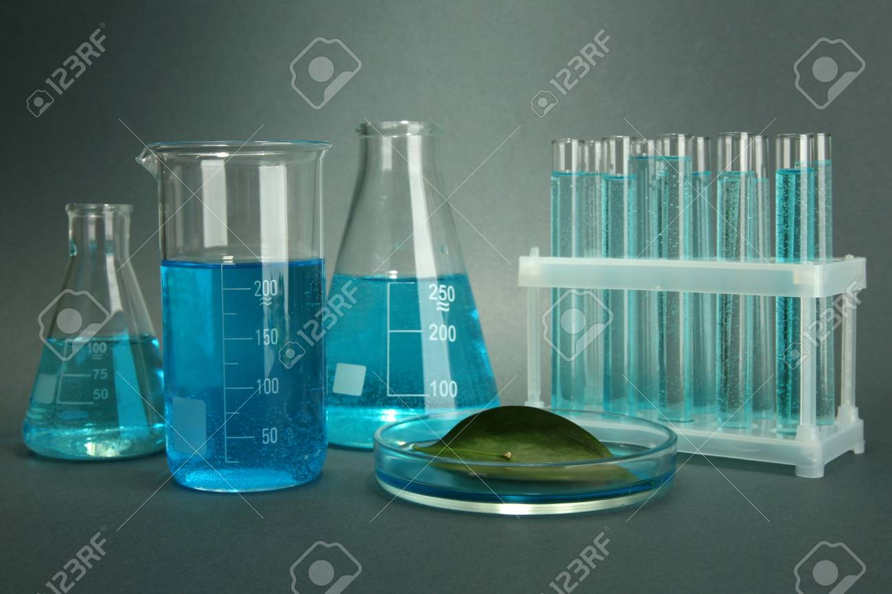 test-tubes and leaf tested in petri dish on grey background Stock Photo - 16859510