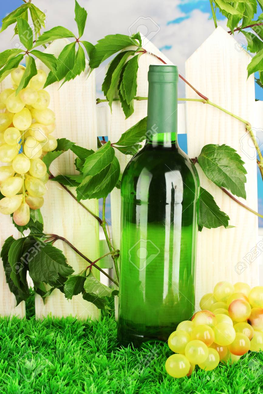 a bottle of wine on the fence background close-up Stock Photo - 17144349