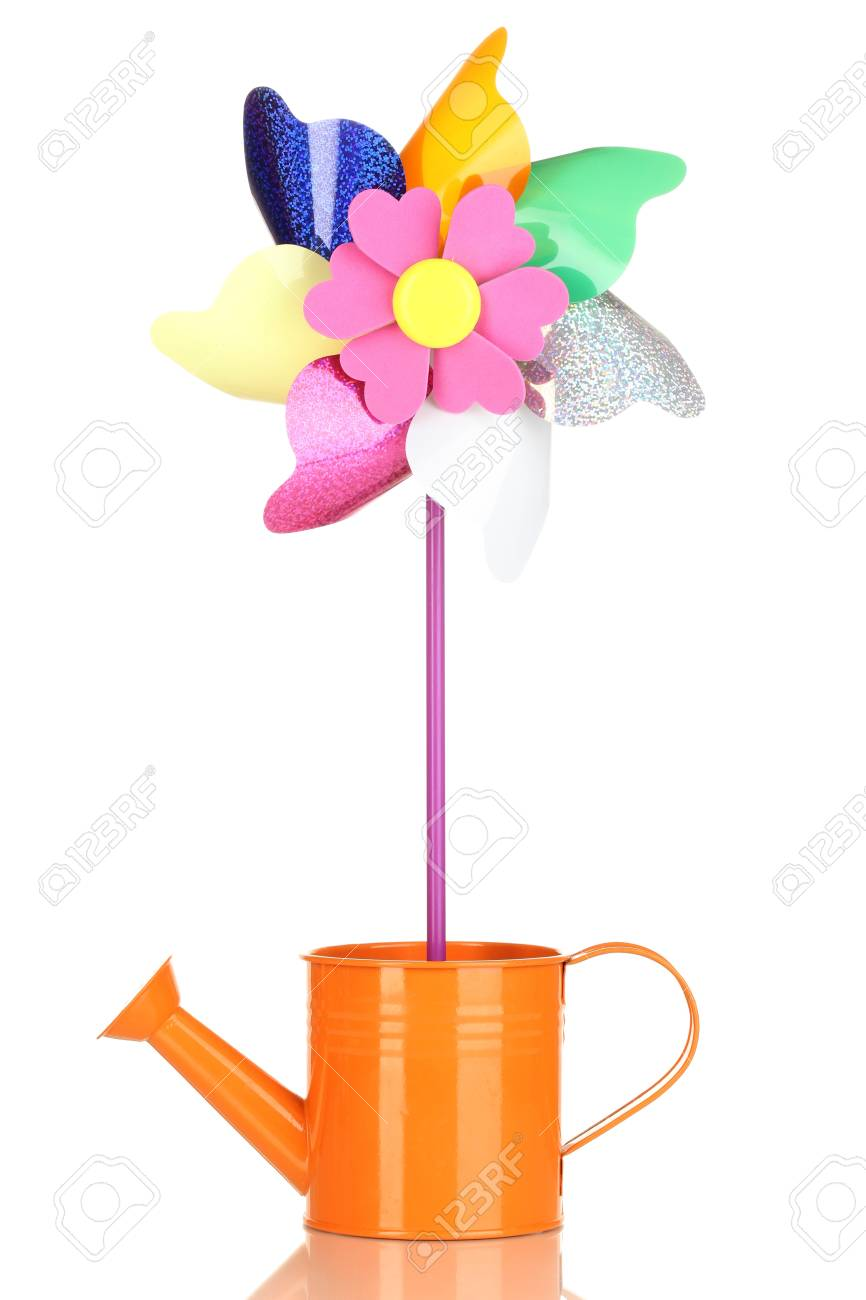 Colored pinwheel in watering can isolated on white Stock Photo - 17263275